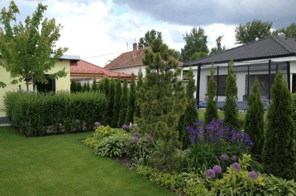 Záhrada v Dolnej Strede