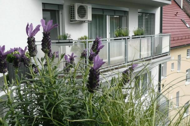 Balkón v Bratislave
