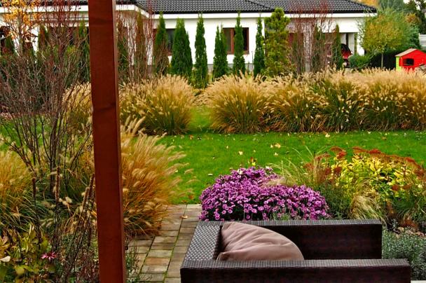 Záhrada v Dolnej Strede okrasné trávy pennisetum