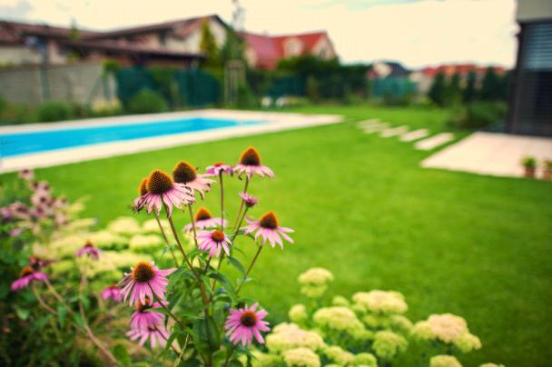 Záhrada pri Kvetoslavove