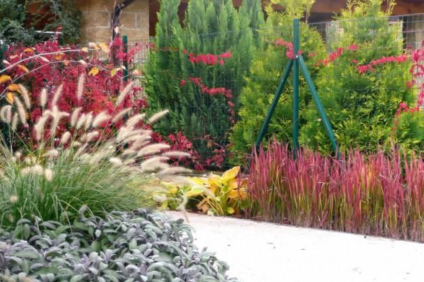 Záhrada v Zálesí