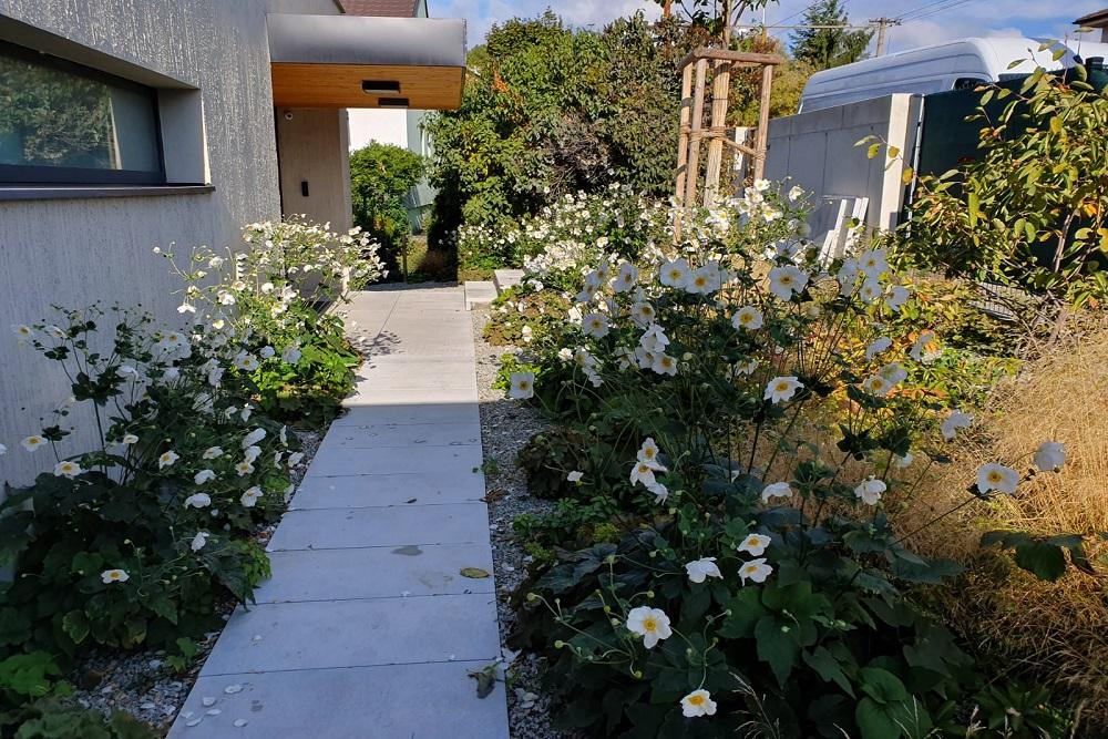 Záhrada z Deschampsií